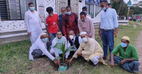 সিরাজদিখানে মনির উদ্দিন ফাউন্ডেশনের উদ্যোগে মুজিব শতবর্ষ উপলক্ষে ১শ নারিকেল গাছ রোপন