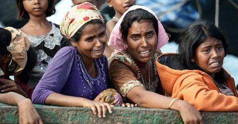 রোহিঙ্গা প্রত্যাবাসনে বাড়ছে আন্তর্জাতিক তৎপরতা