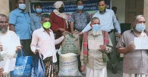 চাঁপাইনবাবগঞ্জের নাচোলে কৃষকদের মাঝে বিনামূল্যে বীজ ও সার বিতরণ