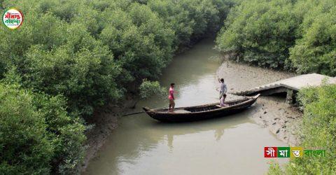 বন কর্মকর্তাদের ধাওয়ায় নদীতে ঝাঁপ দিয়ে নারীর মৃত্যু